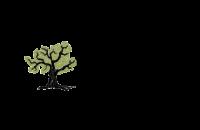 WordPress 5.3.0 Logo